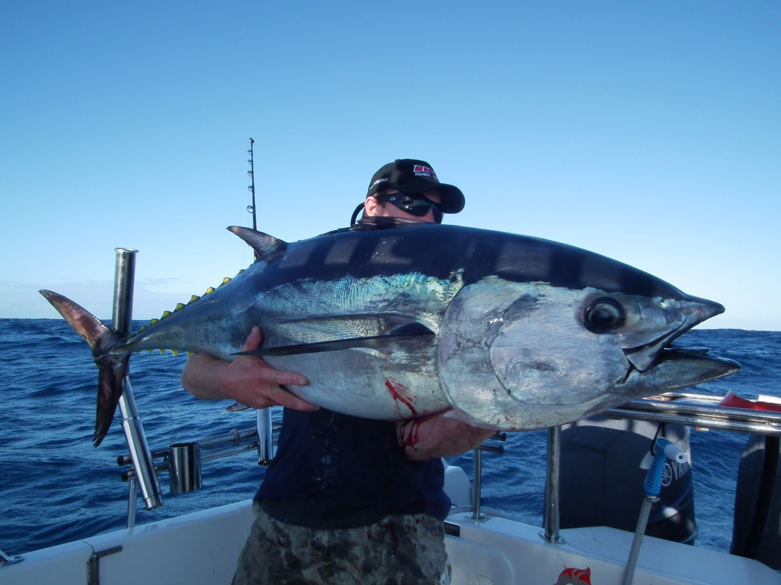Home 3 way charters3 way charters for Tuna fishing boats